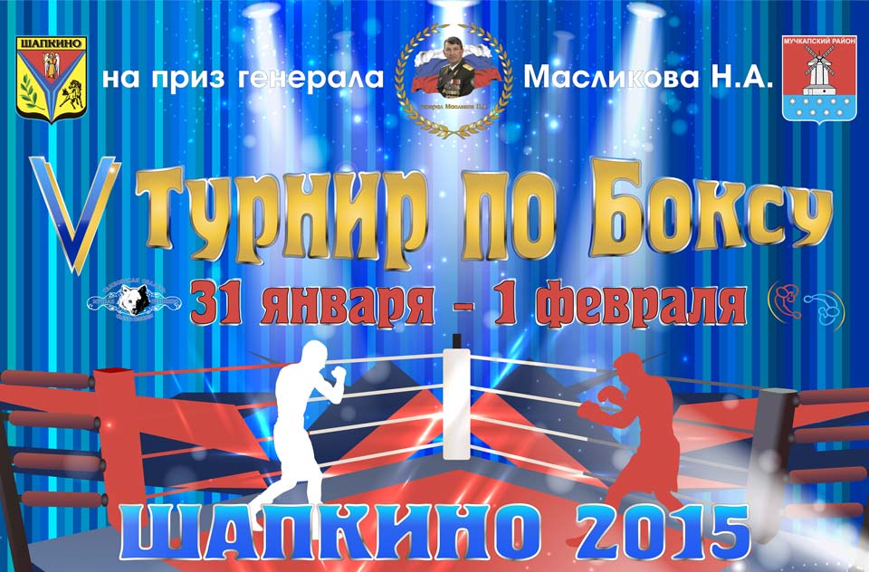 2015 01 31 5 turnir po boxu shapkino